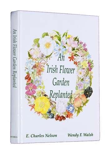 An Irish Flower Garden Replanted.